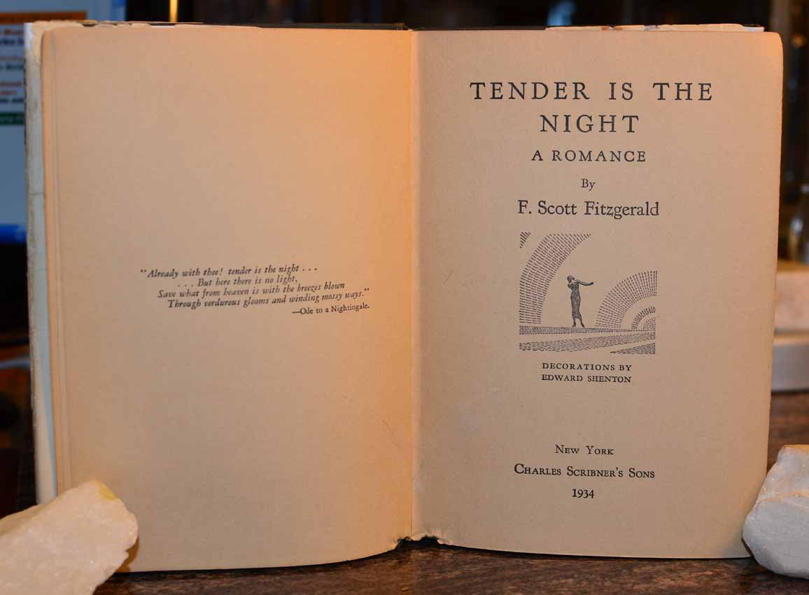 tender is the night essays in criticism